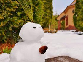 今季最後の雪